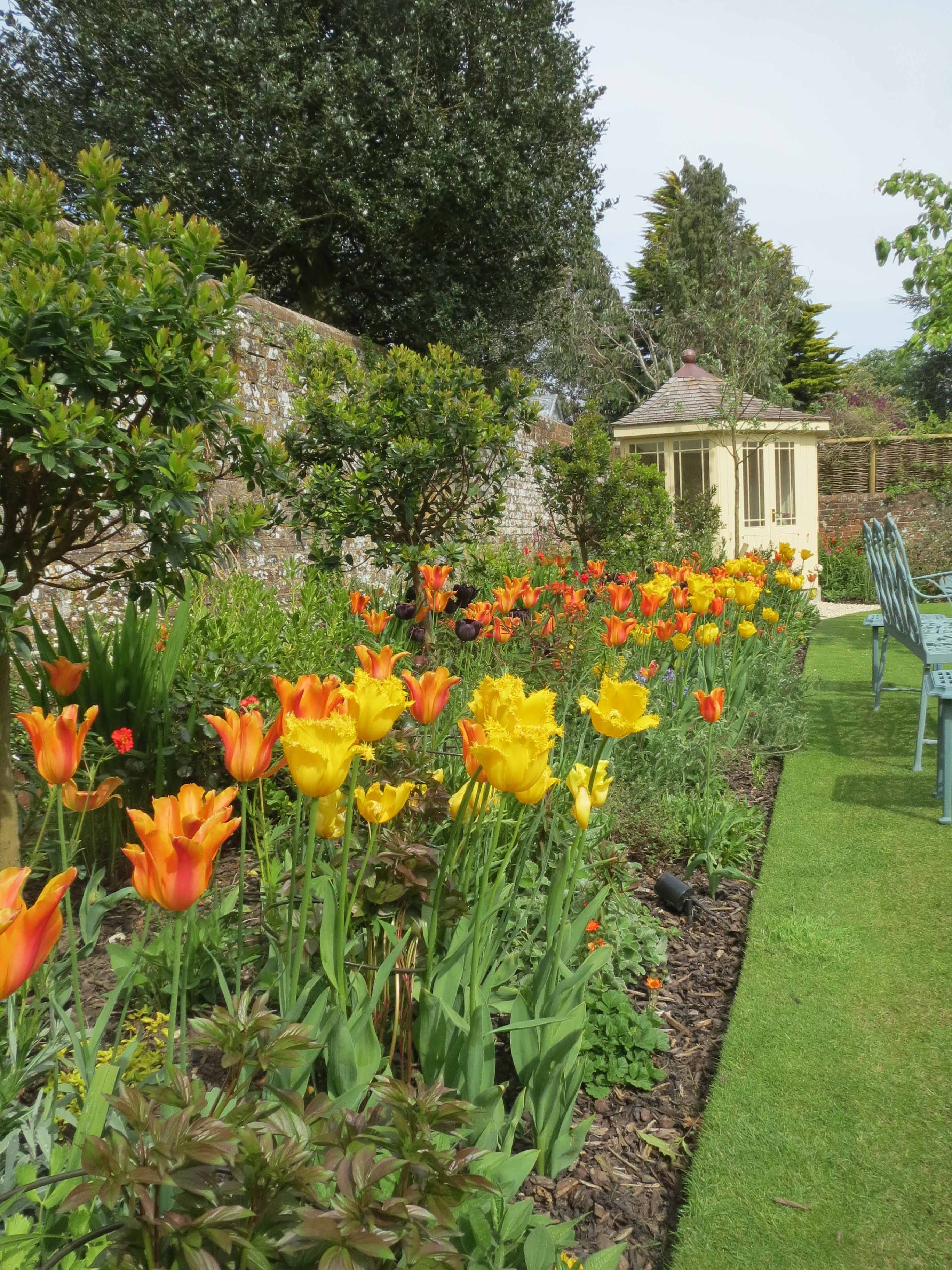 Spring 2014 at moustows blog - Practical tips for gardening in june ...